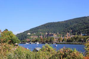 Neckar mit Blick auf das Schloss