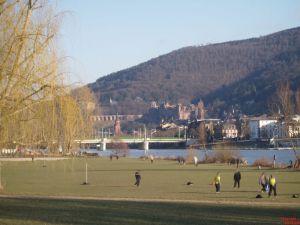 Neckarvorland
